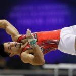 Japan World Gymnastics